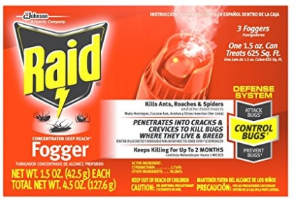 Best Spider Bomb