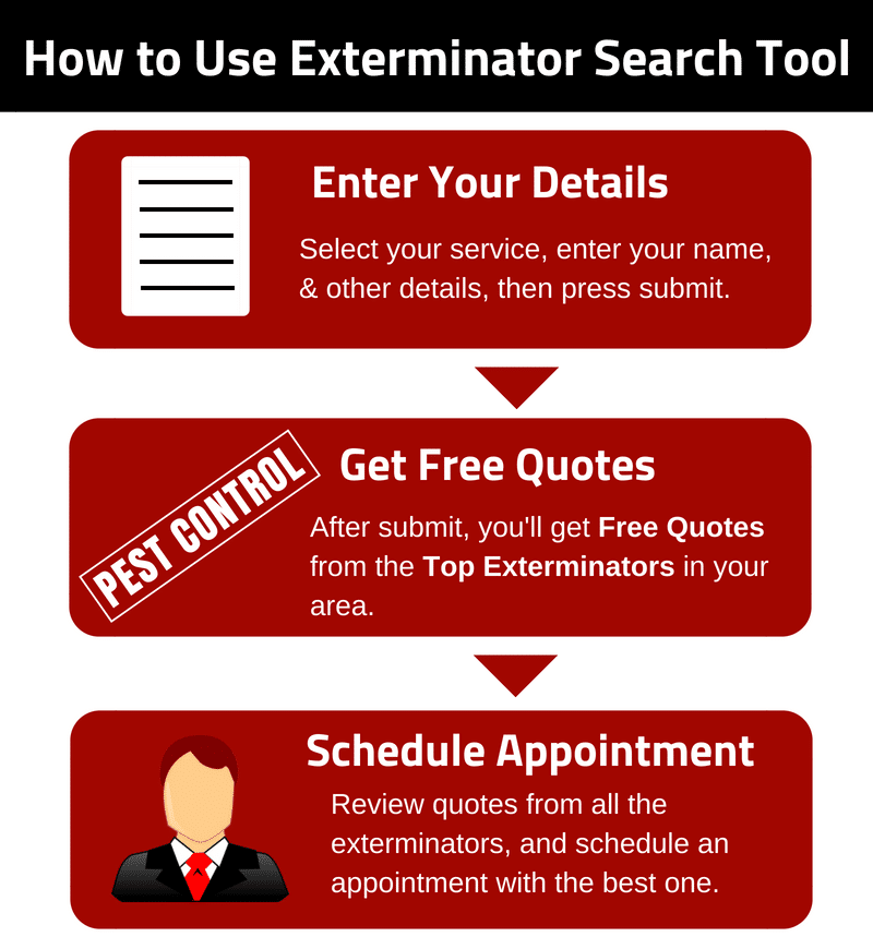 Exterminator Search Tool