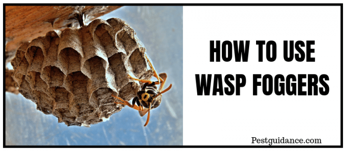 Wasp foggers and bombs
