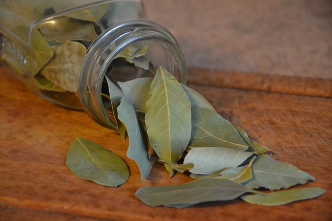 bay leaves for bugs in kitchen