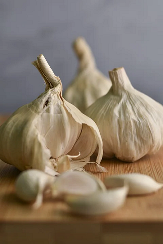 garlic for small black bugs kitchen