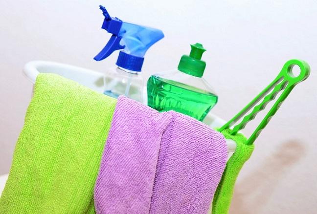 clean spider poop